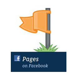 Facebook, Facebook Fan Pages
